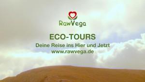 RawVega Eco tours Logo