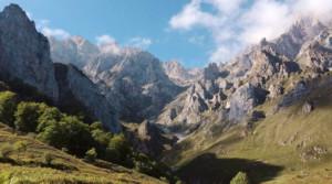 RawVega-Reise-in-die-Urzeit-Deiner-Seele-Ganzheitliche-Reise-Promo